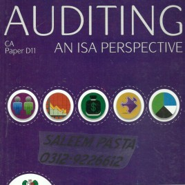 Auditing An ISA Perspective Skans